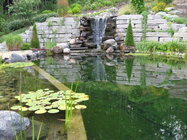 Comment choisir entre baignade naturelle et piscine for Construire piscine naturelle