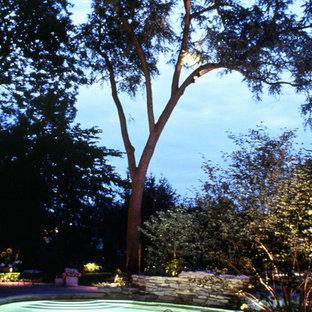 Naturalized Backyard retreat