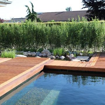 Naturpool - det biologiske alternativ til swimmingpoolen