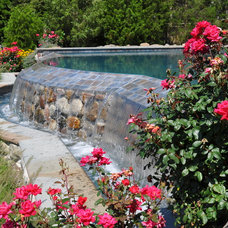 Contemporary Pool by Gibbons Pools Inc.