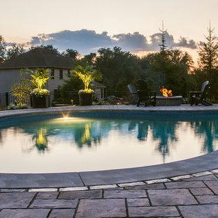 Foto de piscina natural, contemporánea, de tamaño medio, tipo riñón, en patio trasero, con adoquines de ladrillo