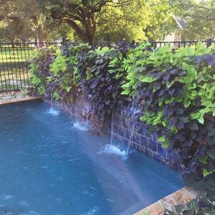 Idee per una piccola piscina naturale contemporanea rettangolare dietro casa con fontane e pedane