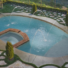 Traditional Pool by Mirage Landscape