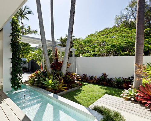 Palm garden home design ideas pictures remodel and decor for Decoration jardin tropical