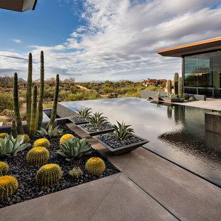 Diseño de piscinas y jacuzzis infinitos, de estilo americano, grandes, rectangulares, en patio trasero, con losas de hormigón