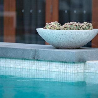 Idee per una grande piscina monocorsia moderna rettangolare in cortile con pedane