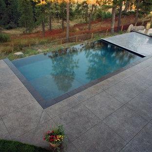 Imagen de piscina infinita, tradicional renovada, de tamaño medio, rectangular, en patio trasero, con suelo de hormigón estampado