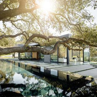 Идея дизайна: прямоугольный бассейн-инфинити на заднем дворе в стиле модернизм с покрытием из бетонных плит