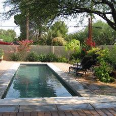 Modern Pool Oasis in the Arizona desert