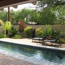 Traditional Pool Oasis in the Arizona desert