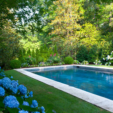 Traditional Pool by Agricultural Services
