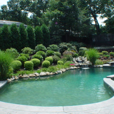 Traditional Pool by WatchCity Kitchens LLC
