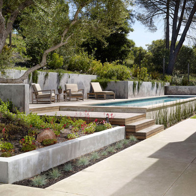 Example of a minimalist pool design in San Francisco with decking