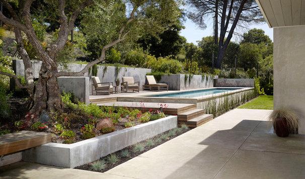 Modern Landscape by Nick Noyes Architecture
