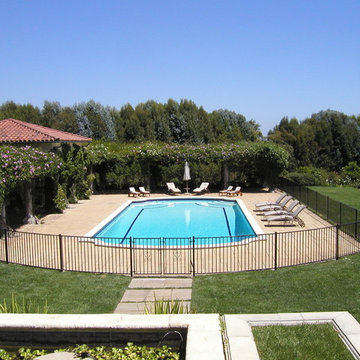Ornamental Iron Pool Fence & Gate
