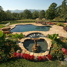 Traditional Pool by CHARLOTTESVILLE AQUATICS