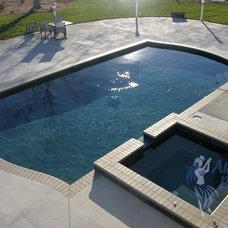 Pool by Aloha Pools