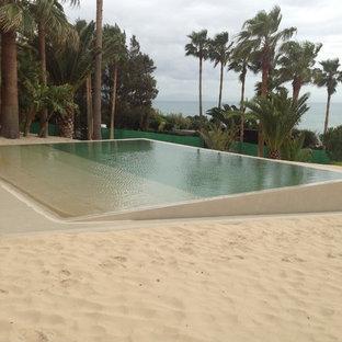 ヒューストンの小さい長方形ビーチスタイルのおしゃれなプール (コンクリート板舗装) の写真