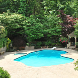 Ornate custom-shaped pool photo in Philadelphia