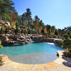 Traditional Pool by Alex Custom Homes, LLC