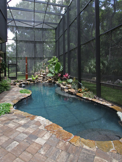 Exotique Piscine by BeeTree Homes