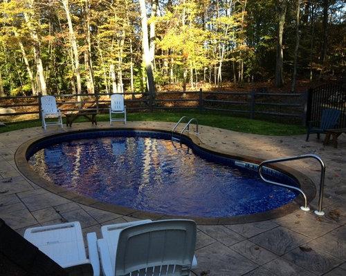 Side Yard Kidney Shaped Pool Design Ideas Renovations
