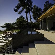 Contemporary Pool by Arcadia Studio