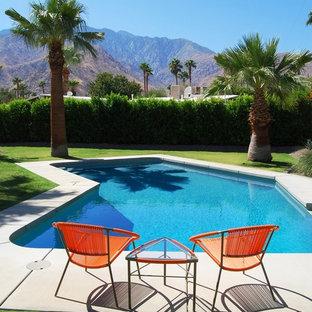 ロサンゼルスの中サイズのオーダーメイドミッドセンチュリースタイルのおしゃれな裏庭プール (コンクリート板舗装) の写真