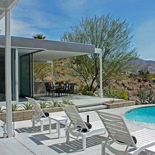 Palm Springs Modern Pool