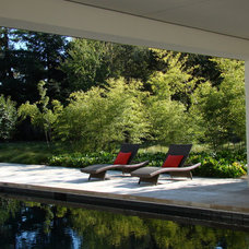 Contemporary Pool by Randy Thueme Design Inc. - Landscape Architecture