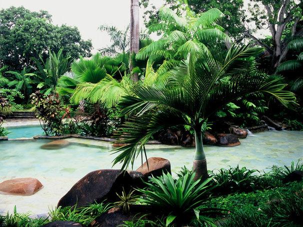 Tropical Pool by Raymond Jungles, Inc.