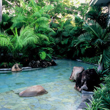 Tropical Pool by Raymond Jungles, Inc.