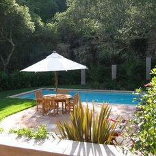 Mediterranean Pool by Pedersen Associates
