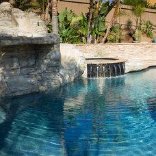 Tropical Pool by XS Studio by Oceanside Glasstile