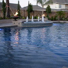 Mediterranean Pool by Omega Pools, LLC  281-330-6771