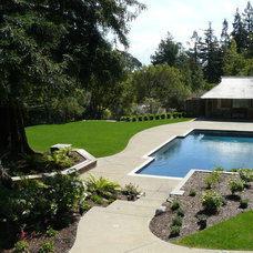 Traditional Swimming Pools And Spas by Classic Pools Inc