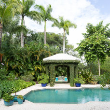 Tropical Pool by Margaux Interiors
