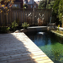 Natural Pools/Water Features