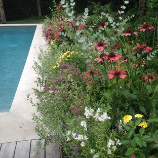 Ispirazione per una piscina fuori terra minimal rettangolare di medie dimensioni e dietro casa con paesaggistica bordo piscina e pedane