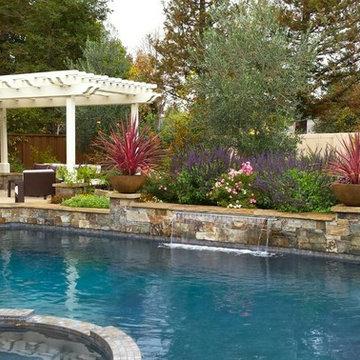 Pleasanton Pool,spa, cook center pond & patios