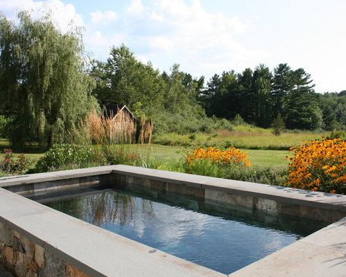 Petite piscine avec des pav s en pierre naturelle photos for Petite piscine naturelle