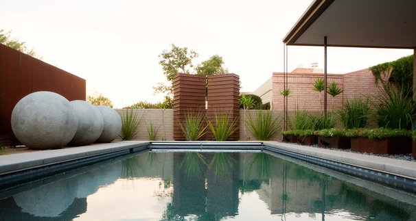 Contemporary Pool by Ibarra Rosano Design Architects