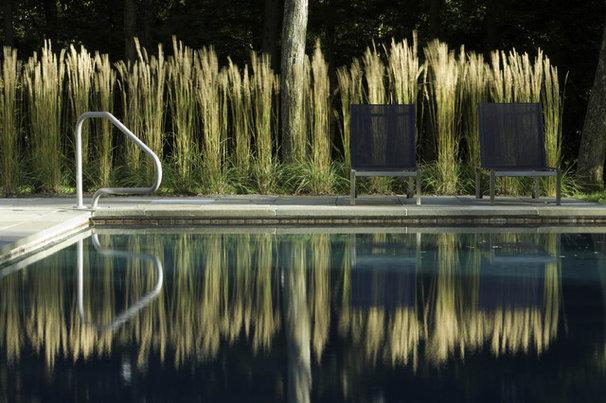 Modern Pool by Wagner Hodgson