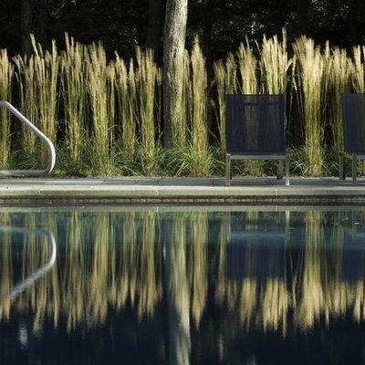 Pool - modern rectangular pool idea in Burlington