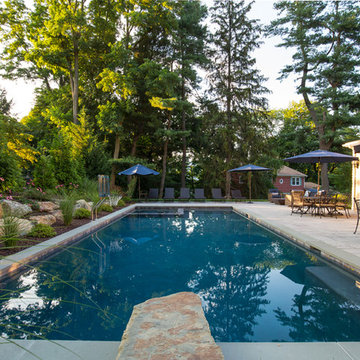 Pool & Spa with Natural Stone Diving Board