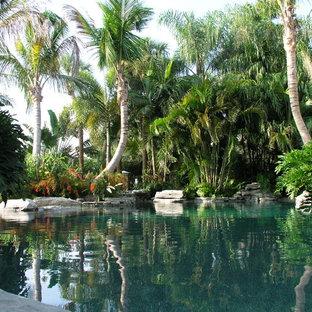 Kolonialstil Schwimmteich in individueller Form in Tampa