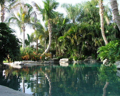 Blue lagoon pebble tec home design ideas pictures for Pool design tampa