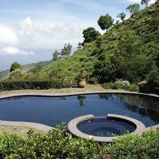 Traditional Pool by Ezarri