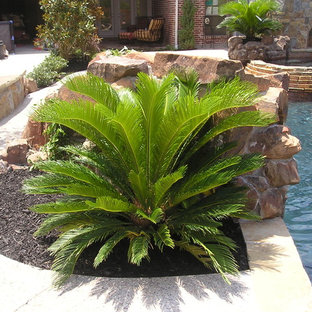 Sago Palm Example Of A Large Arts And Crafts Backyard Concrete Custom Shaped Natural Pool Fountain