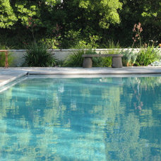 Contemporary Pool by Garden Pacific